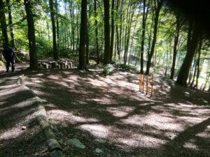 Waldespfad